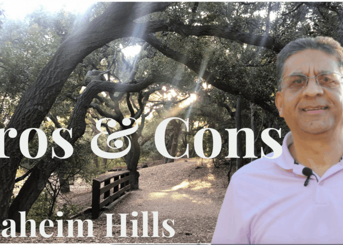 pros and cons of living in anaheim